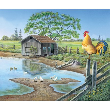 Announcements - rooster Poster Print by John Bindon