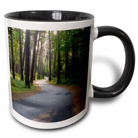 3dRose Minnesota, Itasca State Park, Wilderness Drive path - US24 PHA0003 - Peter Hawkins - Two Tone Black Mug,