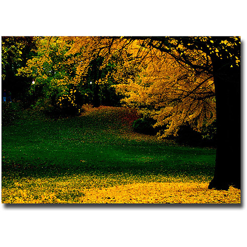"Trademark Fine Art ""All Fall Down"" Canvas Wall Art by Ariane Moshayedi"
