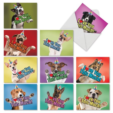 M6611BDG Dog Love You This Much: 10 Assorted Birthday Note Cards Featuring Dogs Holding Their Arms Wide to Show You How Much They Love You,The Best Card Company Stationery with (Dog Stationery Cube)