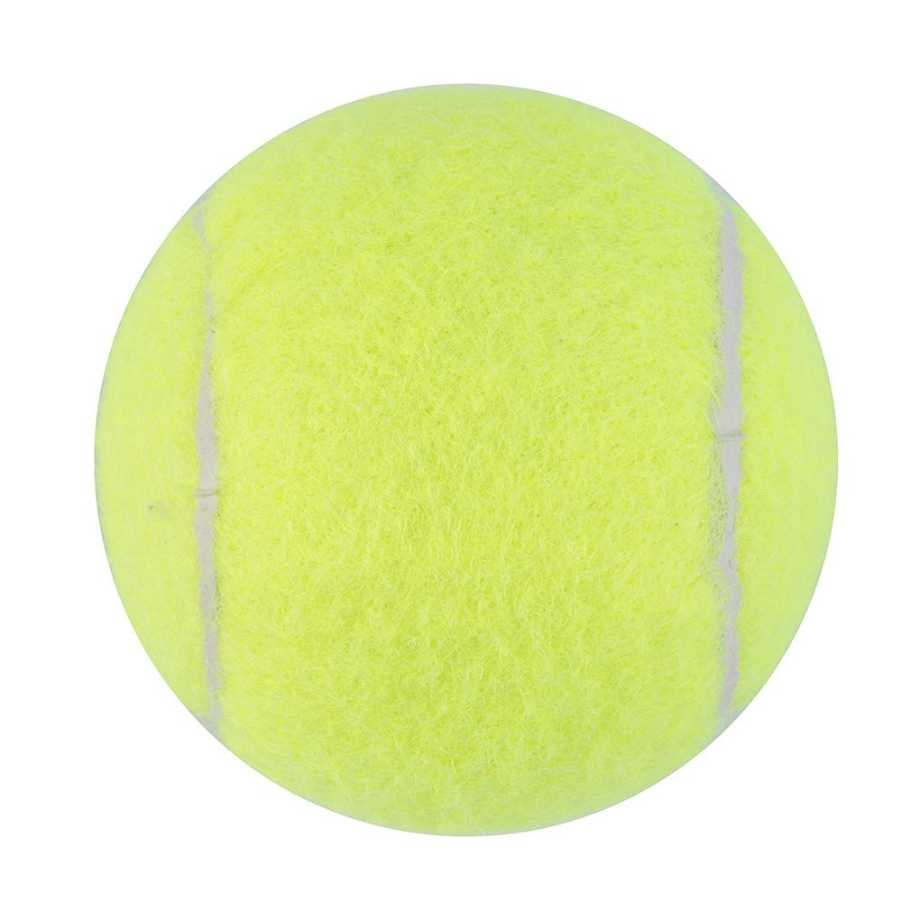 Yellow Tennis Balls Sports Tournament Outdoor Fun Cricket Beach Dog Ideal for Beach... by Publix Hagen Inc