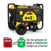 Champion 76533 3800-Watt Dual Fuel RV Ready Portable Generator with Electric Start