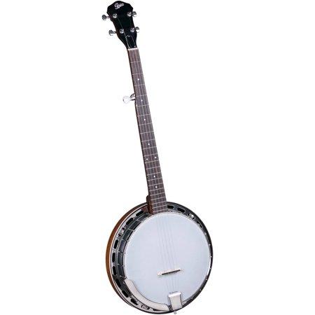 Rover RB-25 Resonator 5-String Banjo (Banjo 5 String Resonator)