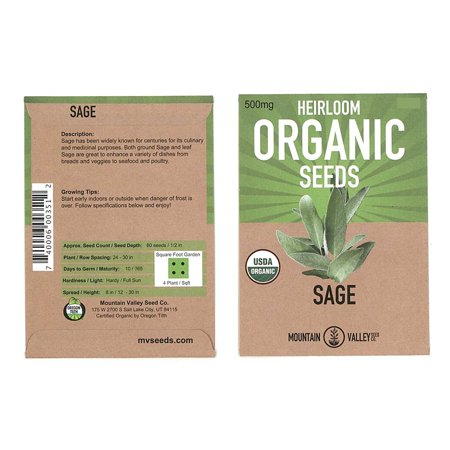 Organic Sage Seeds - 500 mg Packet - Non-GMO Herb Garden Seeds - Culinary Sage for Cooking - Perennial Gardening