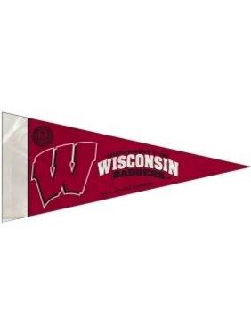 Wisconsin Badgers 8 Piece Mini Pennant Set
