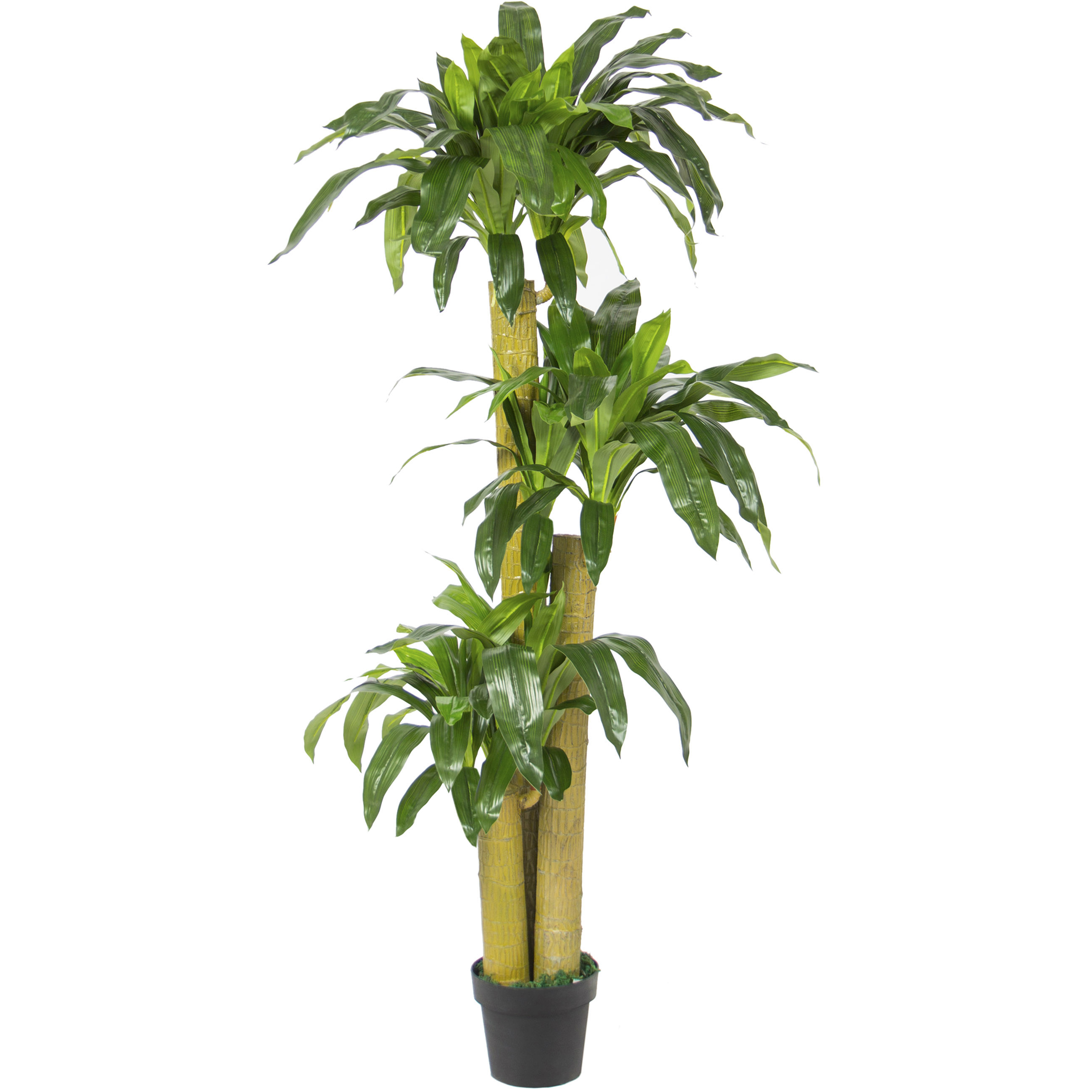 Best Choice Products 6 FT Decorative Artificial Tree Dracaena Plant