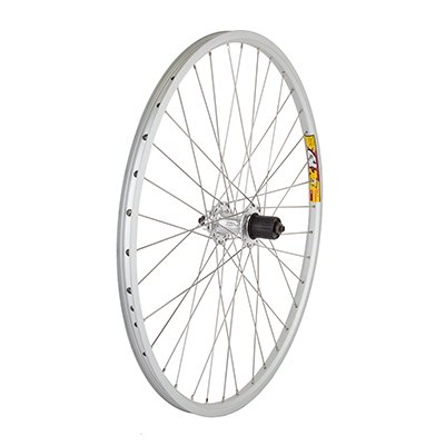 Disc 26 Inch Mtb Rim - Wheel Rear 26x1.5 Weinmann ZAC19 Silver 36 Alloy 8S CASS 6B DISC