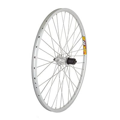 Wheel Rear 26x1.5 Weinmann ZAC19 Silver 36 Alloy 8S CASS 6B DISC (Rear Clincher Disc Wheel)