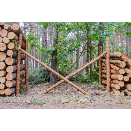 Canvas Print Stack Tree Supported Cut Pine Wood Slice Stretched Canvas 10 x - Tree Slices For Sale