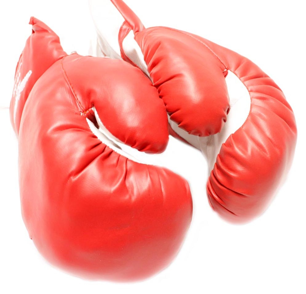 1 Pair of New Boxing   Punching Gloves and Fitness Training : Red 12oz by