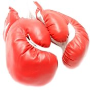 1 Pair of New Boxing   Punching Gloves and Fitness Training : Red 6oz by