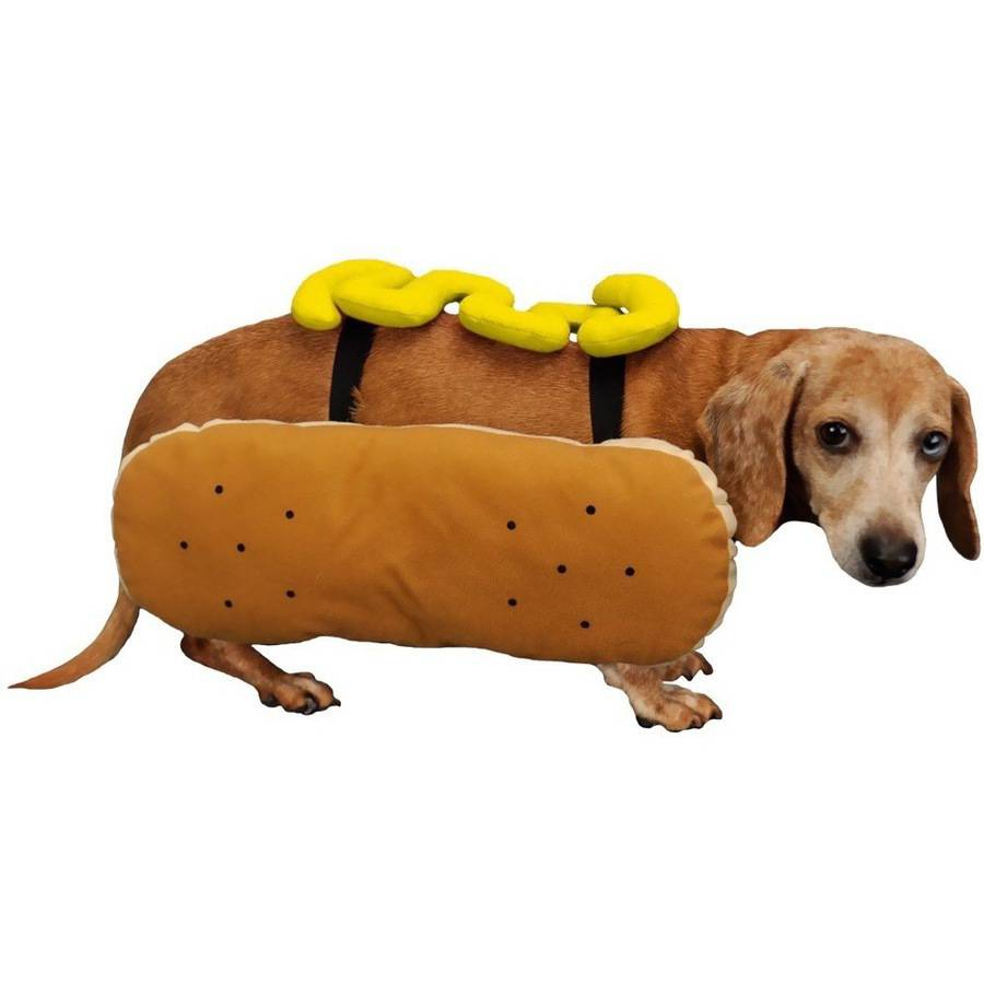 Otis and Claude Fetching Fashion Hot Diggity Dog Costume Mustard, S