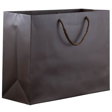 JAM Paper Matte Horizontal Gift Bag, Large, 13