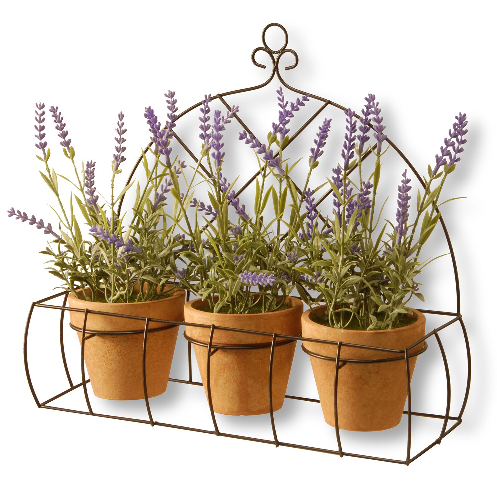 "17"" Potted Lavender Plants in Decorative Rack"
