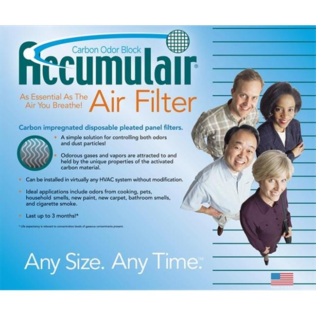 Day-And-Night FO20X20X2-RDN Air Purifier Carbon Filters  Pack of 2