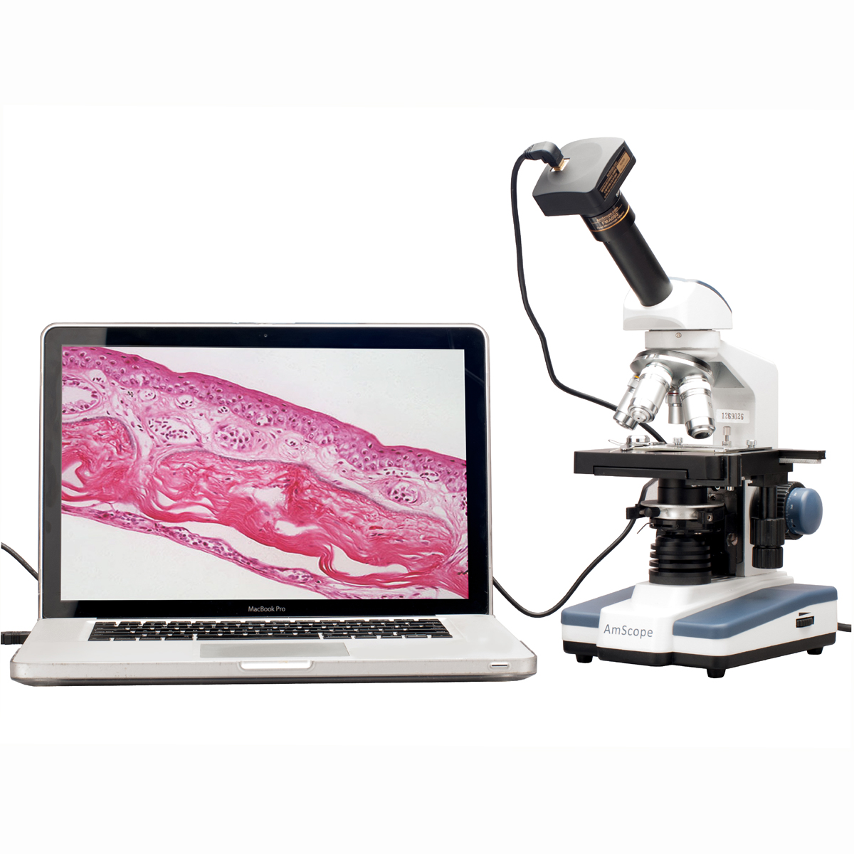 AmScope 2000X Double Layer Mechanical Stage LED Compound Microscope +10MP Digital Camera by United Scope