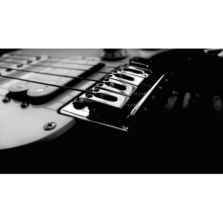 Peel-n-Stick Poster of Black And White Guitar String Musical Poster 24x16 Adhesive Sticker Poster - Black And White Musical