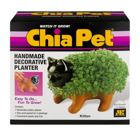 As Seen on TV Chia Pet - Kitten - Handmade Decorative Planter