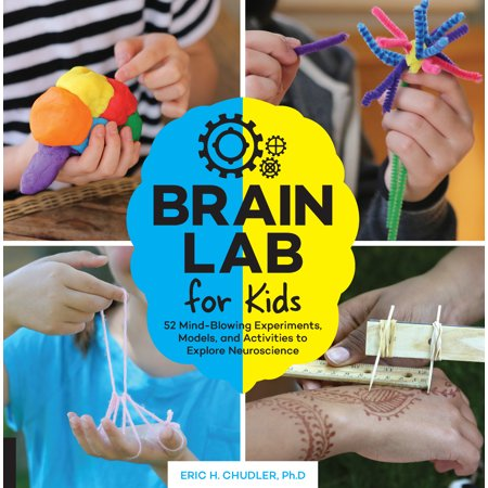 Brain Lab for Kids : 52 Mind-Blowing Experiments, Models, and Activities to Explore Neuroscience - Brain Break Activities