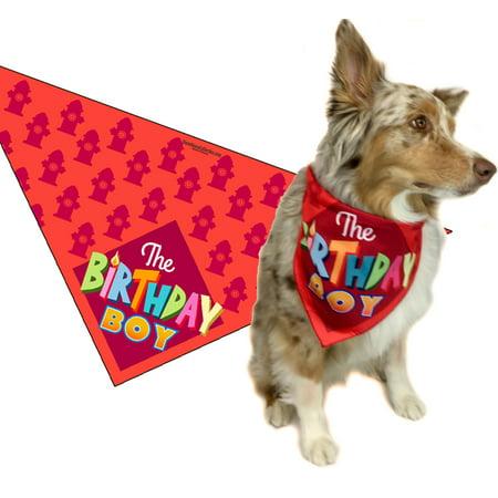 Birthday Boy Dog Bandana for Medium to Large Dogs - Halloween Dog Bandanas Uk