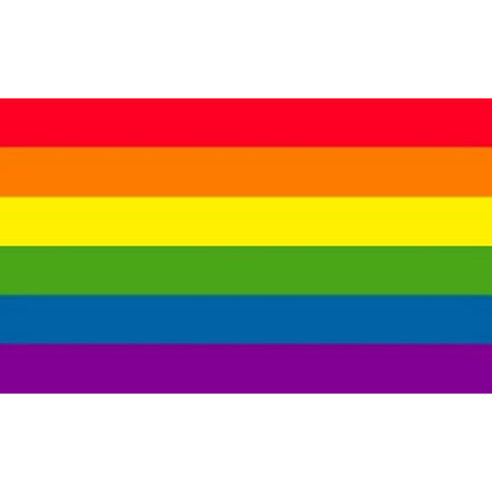 Rainbow Flag Gay Pride Banner Striped Pennant LGBT Large Event Sign New 4x6 for $<!---->
