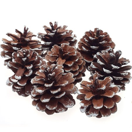 8Pcs Snow Pinecone Ornaments Christmas Tree Baubles Pine Cones Decorations ()