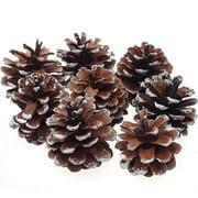 8Pcs Snow Pinecone Ornaments Christmas Tree Baubles Pine Cones Decorations