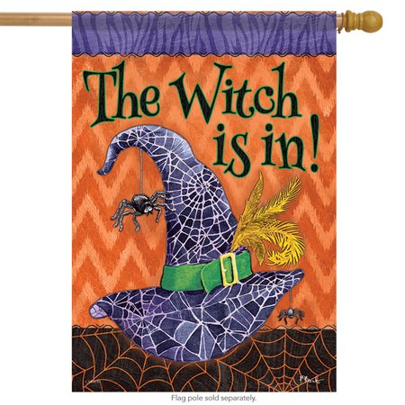 The Witch is in Halloween House Flag Spider Web Double Sided 28
