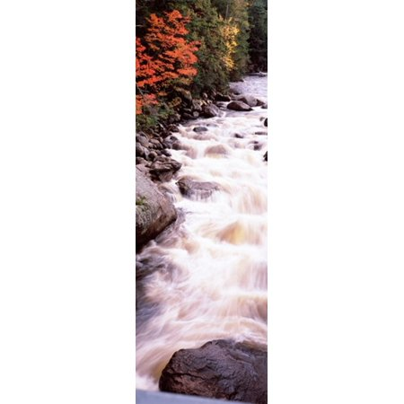 River flowing through a forest Ausable River Adirondack Mountains Wilmington Essex County New York State USA Canvas Art - Panoramic Images (18 x (Wilmington Mall Stores)