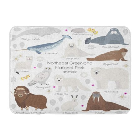 GODPOK Greenland National Park Animal White Polar Bear Narwhal Whale Musk Ox Seal Walrus Arctic Fox Ermine Rug Doormat Bath Mat 23.6x15.7 inch