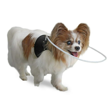Dog House Blind - Blind Dog Halo Harness/Vest for Pets Under 30 lbs