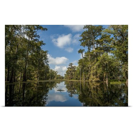 Great Big Canvas   Rolled Poster Print Entitled Louisiana  Swamp Landscape  Breaux Bridge