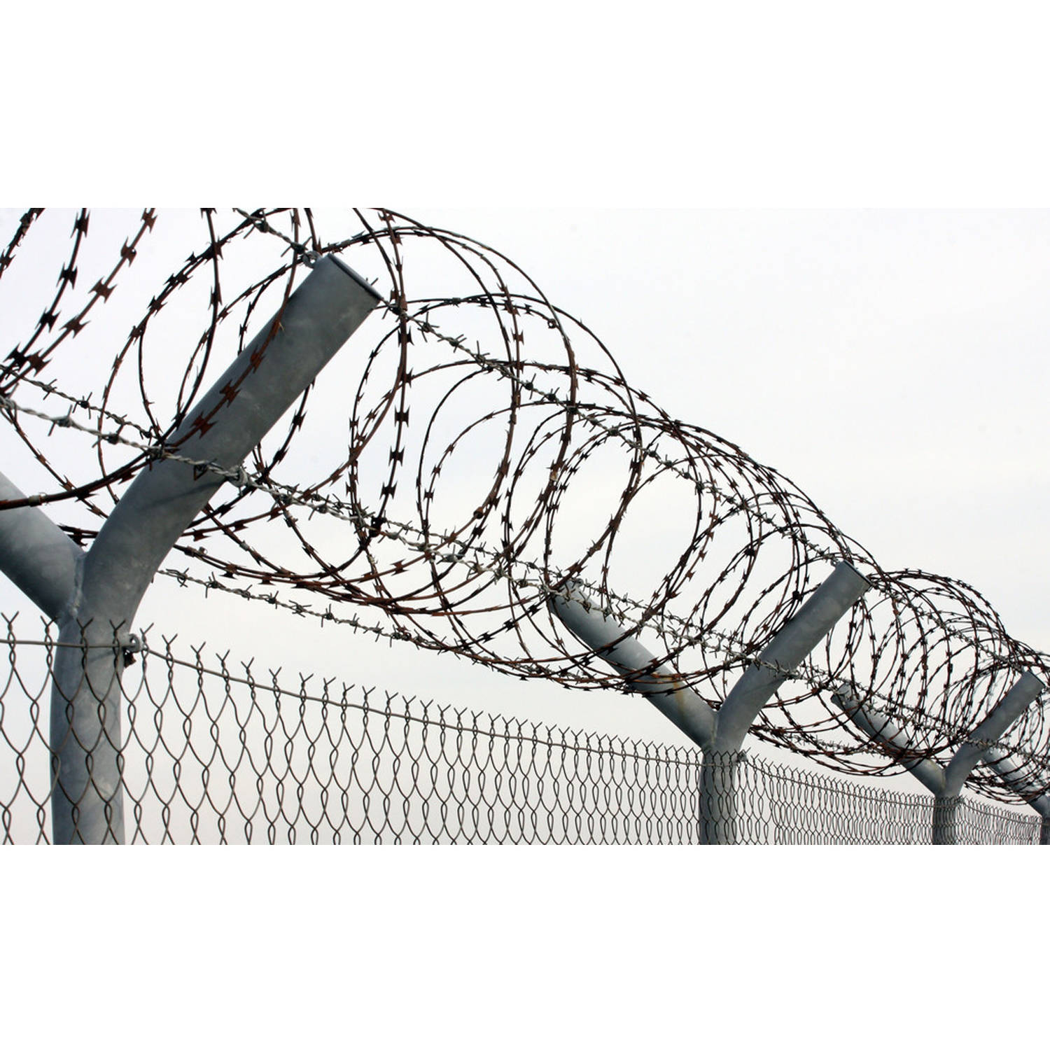 Amazing Concertina Wire Where To Order Contemporary - Wiring Diagram ...