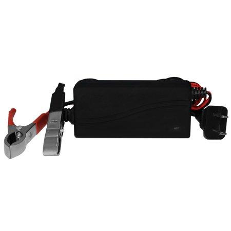 YTX4L-BS Battery for ATV E-Ton NXL, RXL 50CC 99-03 + 12V 1Amp Charger - image 2 de 6