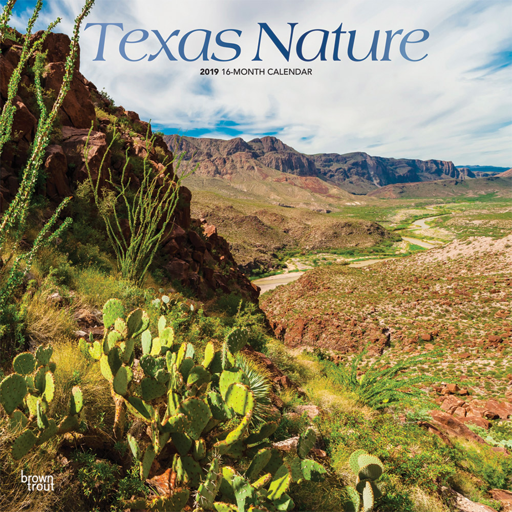 Texas Nature 2019 12 x 12 Inch Monthly Square Wall Calendar with Foil Stamped Cover, USA United States of America Southwest State Wilderness