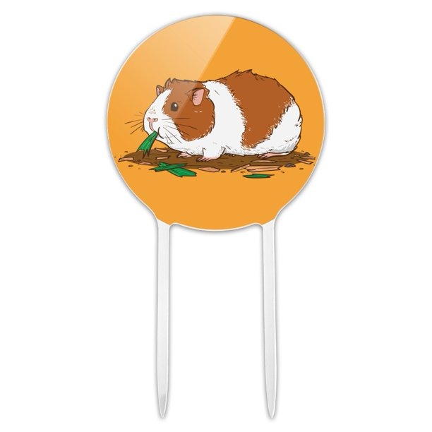 Acrylic Guinea Pig Eating Cake Topper Party Decoration for ...