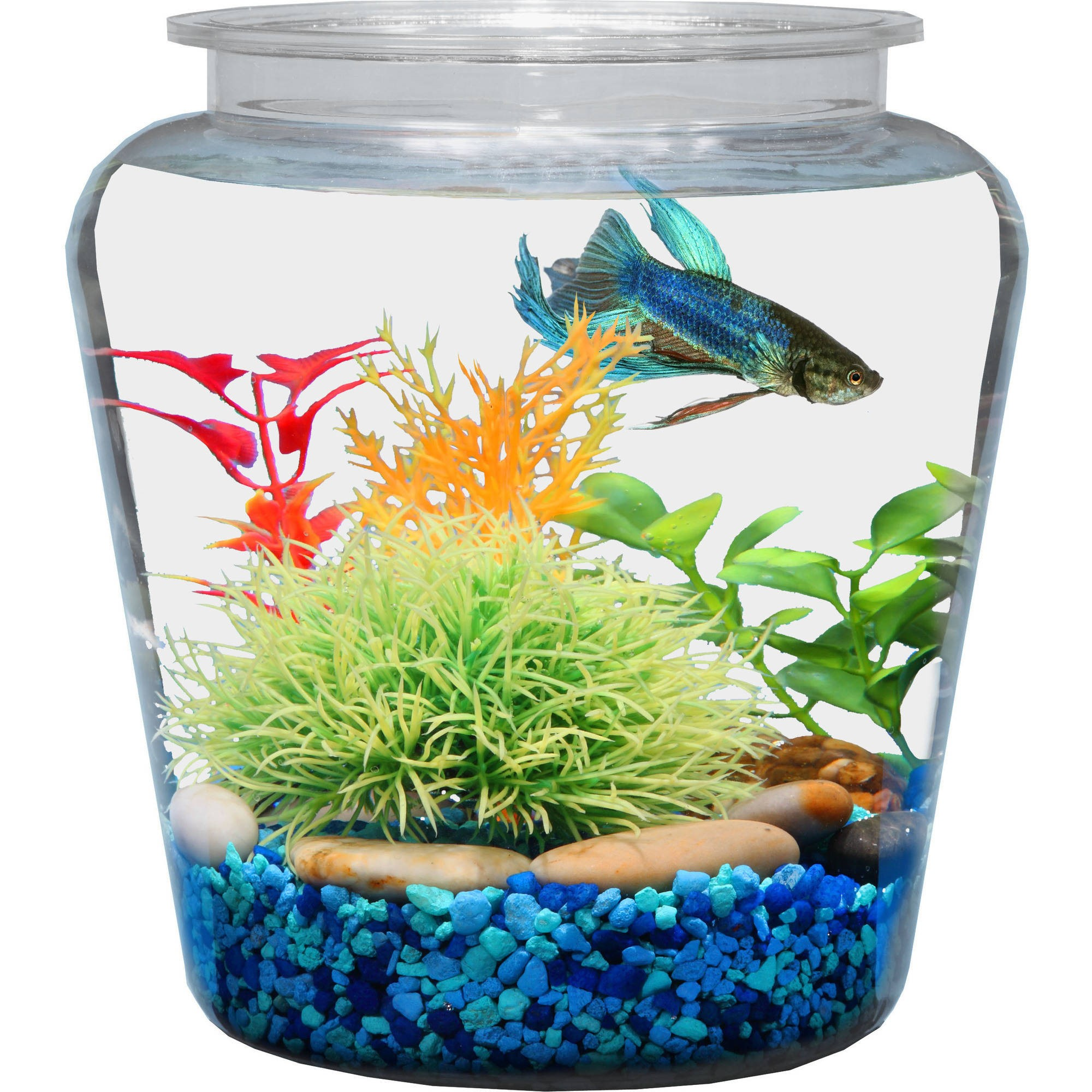 reviews x for walmart w aquarium tank feeder com gallon aqua product automatic l h food culture fish