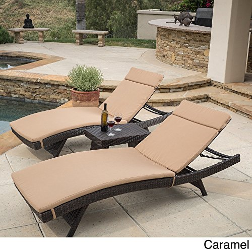 Christopher Knight Home Luana Outdoor 3-piece Wicker Adjustable Chaise Lounge Set with... by