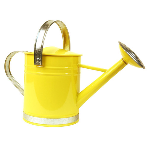 Arcadia Garden Products 0.5 Gallon Basic Watering Can