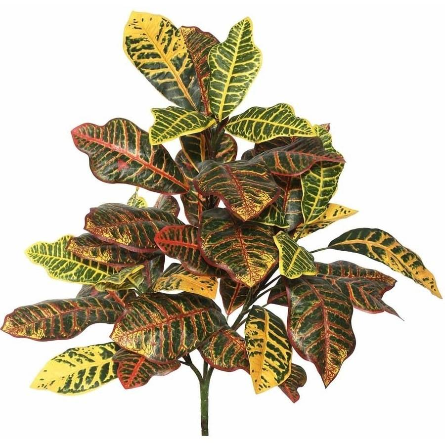 """Vickerman 34"""" Artificial Green and Orange Cronton Plant Featuring 3 Branches with 40 Leaves"""