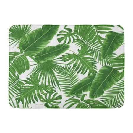 Godpok Plant Green Leaf Tropical Leaves Dense Jungle