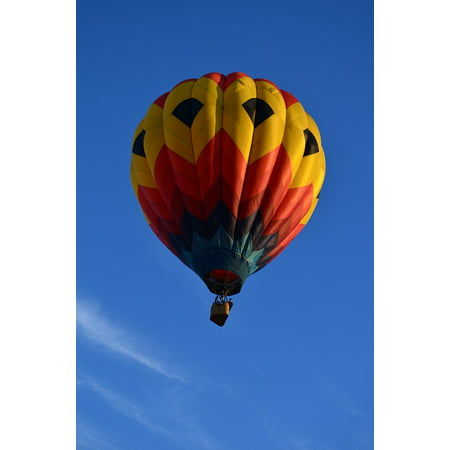 Flight Hot Air Balloons (Canvas Print Colorful Balloon Hot Air Balloons Flying Flight Stretched Canvas 10 x 14)