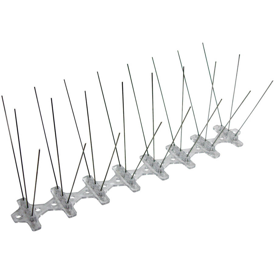 "Bird B Gone MM2001-5/20 20' x 5"" Stainless Steel Bird Spikes"