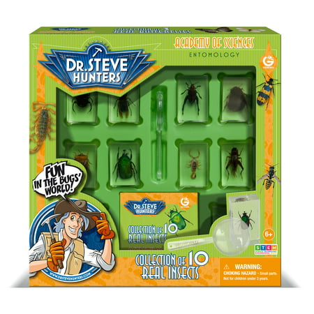 Dr. Steve Hunters - Bugs World Collection - 10 REAL insects - Uncle Milton Scientific Educational Toy](Educational Toys For 10 Year Olds)