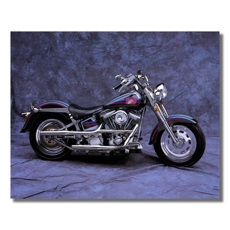 Harley Davidson Customized Fatboy Motorcycle Photo Wall Picture 8x10 Art Print