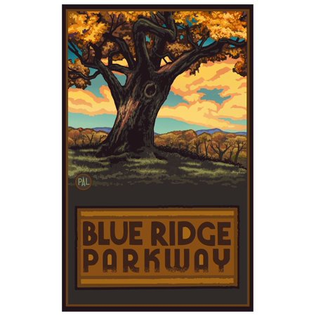 Blue Ridge Parkway Big Oak Tree Travel Art Print Poster by Paul A. Lanquist (12