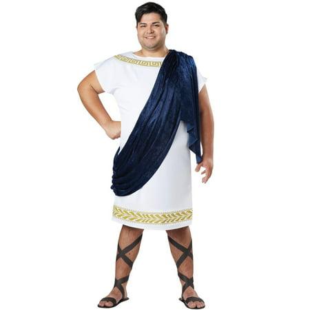 Grecian Toga Plus Size Costume](Toga Ideas For Women)