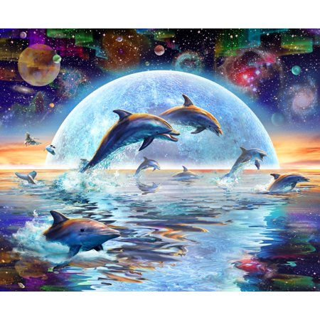 Dolphins by Moonlight Rolled Canvas Art - Adrian Chesterman (28 x (Moonlight Dolphin)