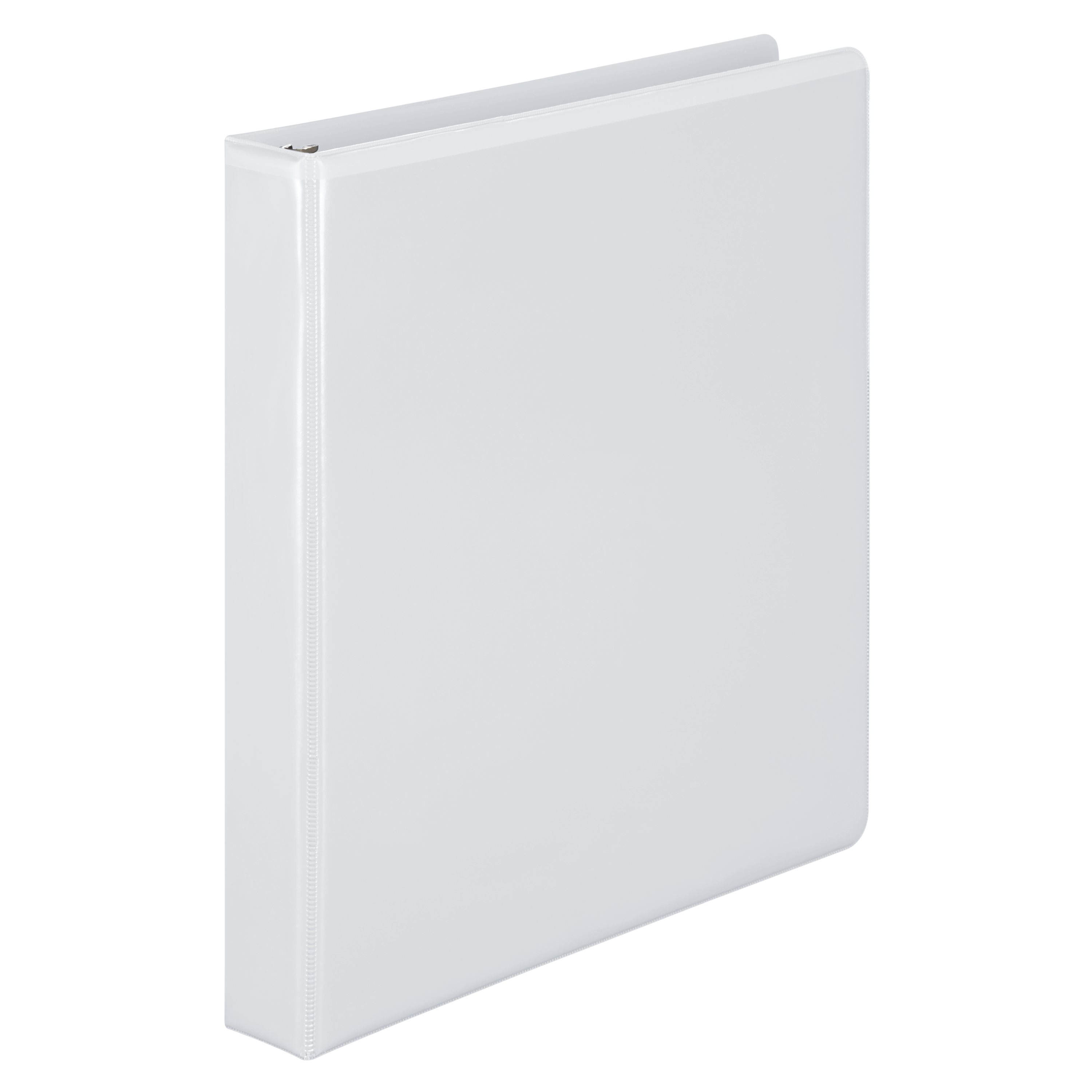 Wilson Jones 386 Basic D-Ring View Binder, 1\ by ACCO BRANDS