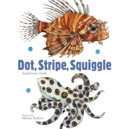 - Dot Stripe Squiggle (Board Book)